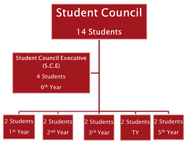 Student Voice and Leadership