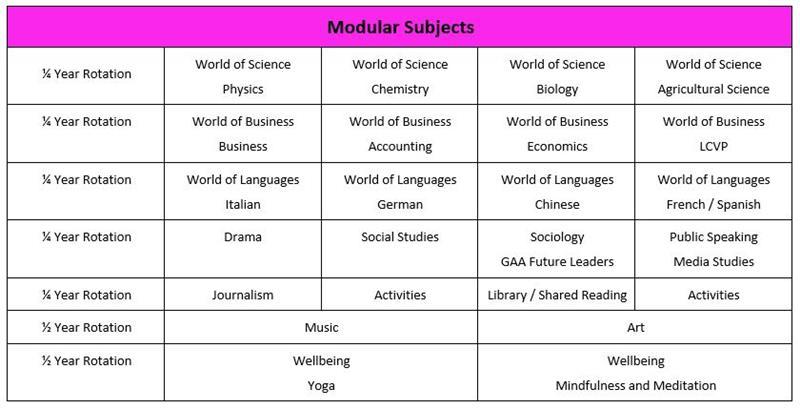 TY Modular Subjects.JPG